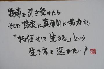 IMG_2851.JPG