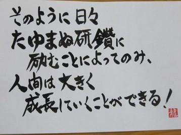 IMG_7941.JPG