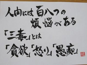 IMG_7948.JPG
